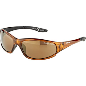 Alpina Wylder Okulary, brown transparent/gold mirror